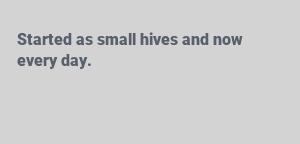 small hives