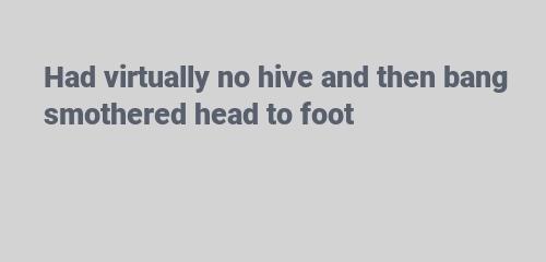 Had virtually no hive and then bang smothered head to foot