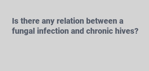 any relation between a fungal infection and chronic hives