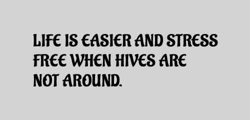 Life is easier and stress free when hives are not around.