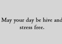 May your day be hive and stress free.