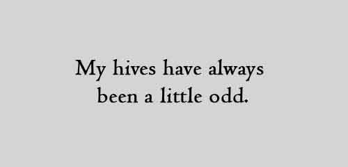 My hives have always been a little odd.