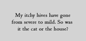 My itchy hives have gone from severe to mild. So was it the cat or the house